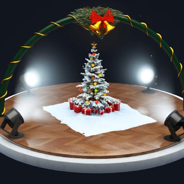 CHRISTMAS SCANE