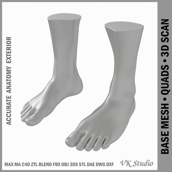 Male Realistic Feet Base Mesh - 3DOcean Item for Sale
