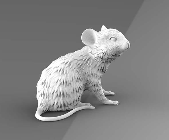 Mouse - 3DOcean Item for Sale