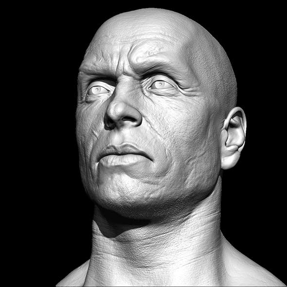 Realistic male head 3D model - 3DOcean Item for Sale