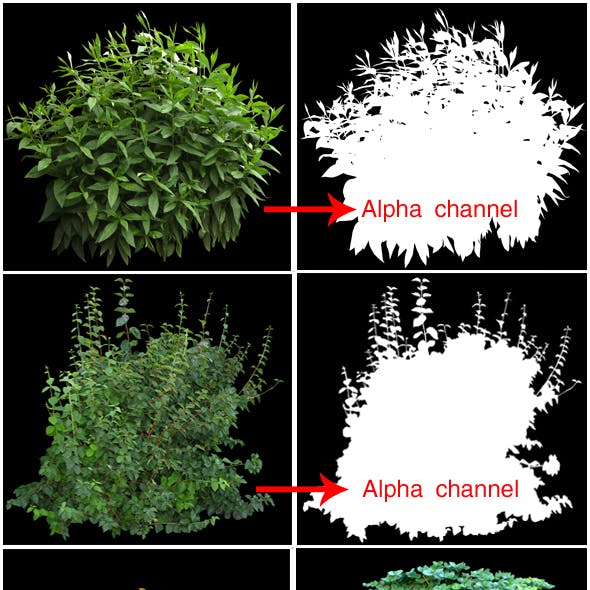 Bushes(alpha chennels)pack