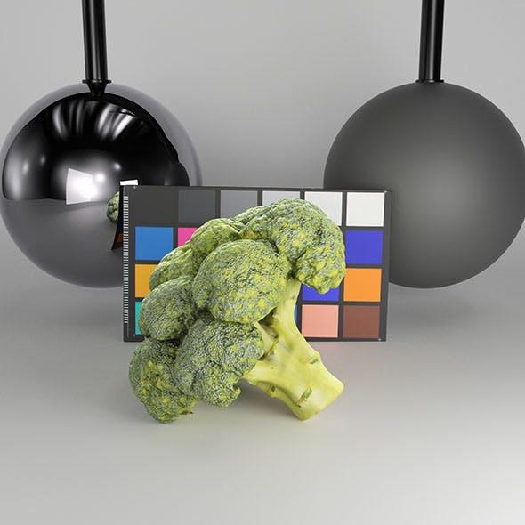 Cob of broccoli 27