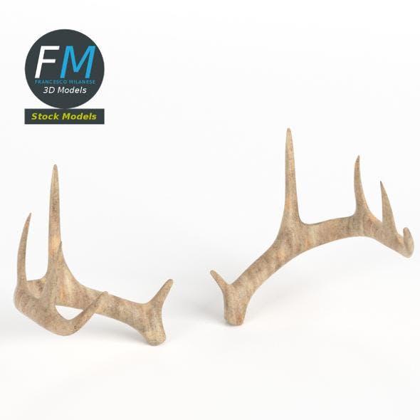 Antlers - 3DOcean Item for Sale