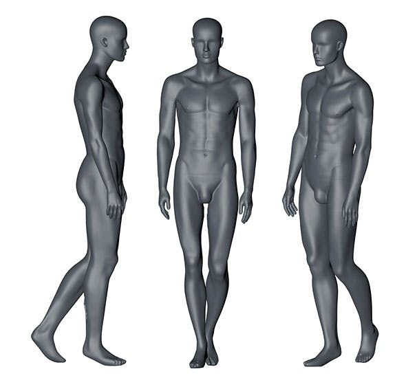 Male Mannequin (12) 3d printing model - 3DOcean Item for Sale