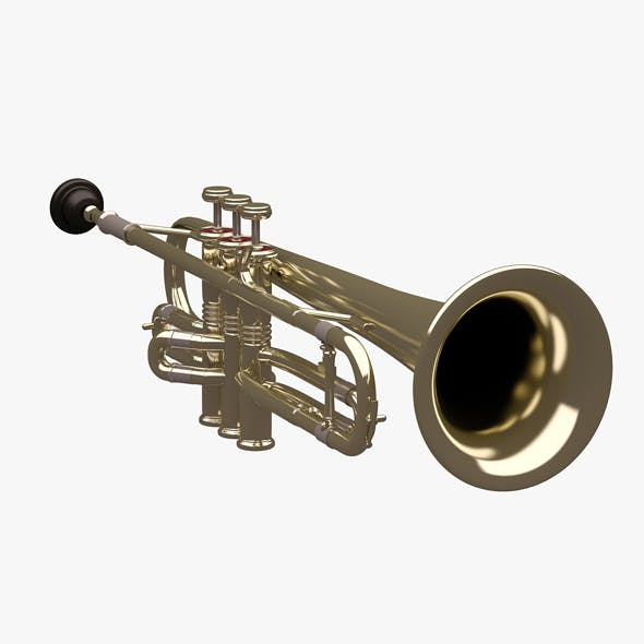 Trumpet 01 - 3DOcean Item for Sale