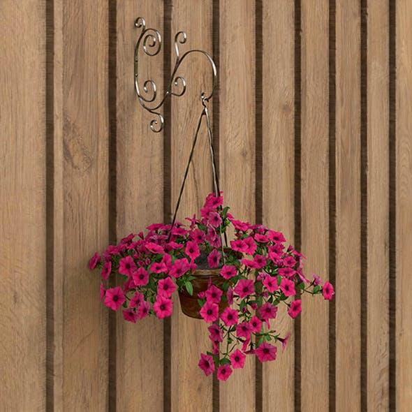 Hanging flower - 3DOcean Item for Sale