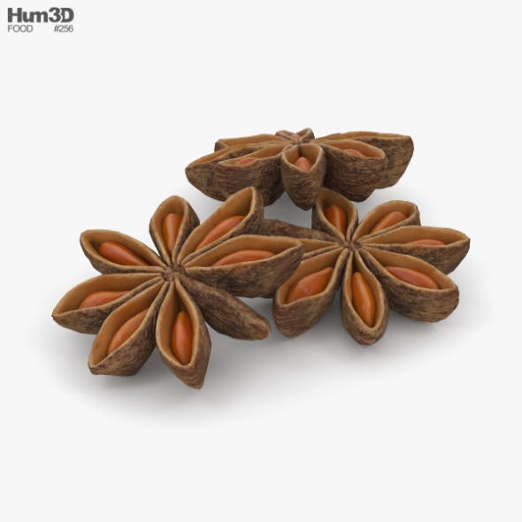 Anise - 3DOcean Item for Sale