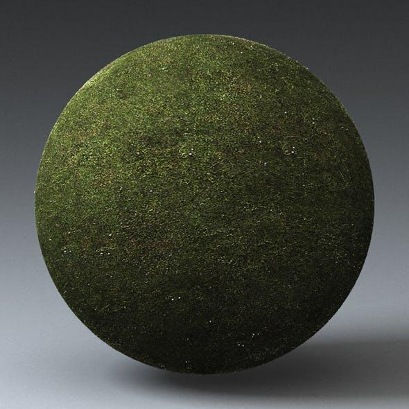 Grass Landscape Shader_002 - 3DOcean Item for Sale