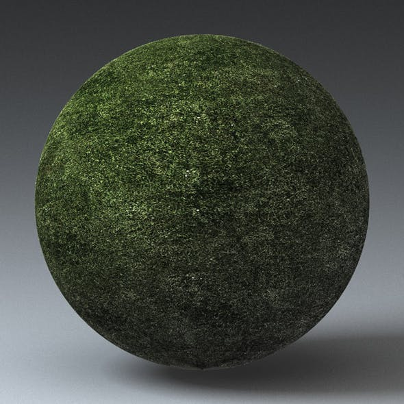 Grass Landscape Shader_005 - 3DOcean Item for Sale