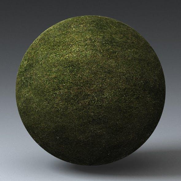 Grass Landscape Shader_006 - 3DOcean Item for Sale
