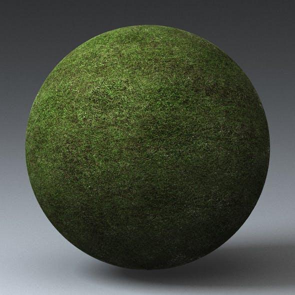 Grass Landscape Shader_009 - 3DOcean Item for Sale