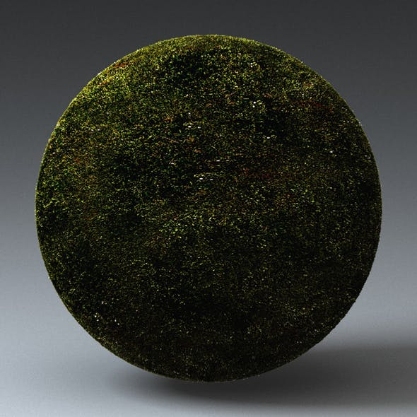 Grass Landscape Shader_011