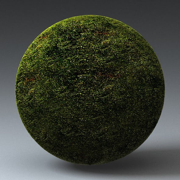 Grass Landscape Shader_012 - 3DOcean Item for Sale