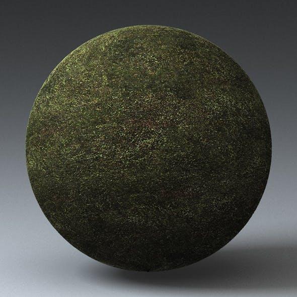 Grass Landscape Shader_013 - 3DOcean Item for Sale