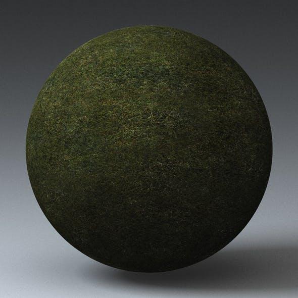 Grass Landscape Shader_015