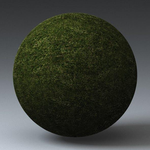 Grass Landscape Shader_018 - 3DOcean Item for Sale