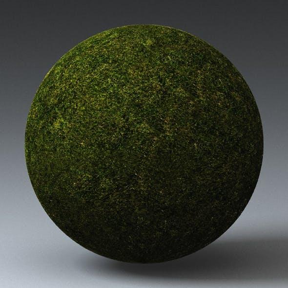 Grass Landscape Shader_028 - 3DOcean Item for Sale