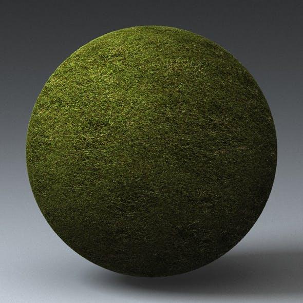 Grass Landscape Shader_029 - 3DOcean Item for Sale