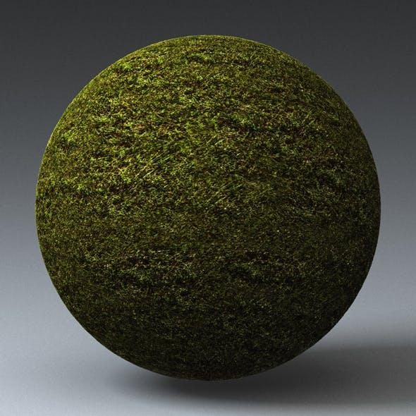 Grass Landscape Shader_030 - 3DOcean Item for Sale