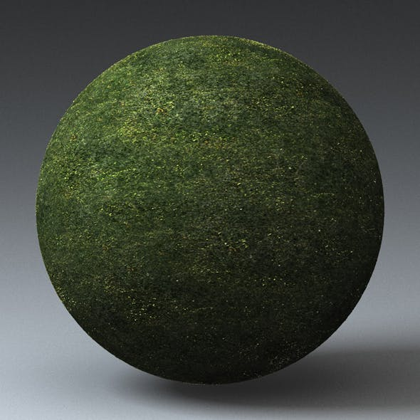 Grass Landscape Shader_033 - 3DOcean Item for Sale
