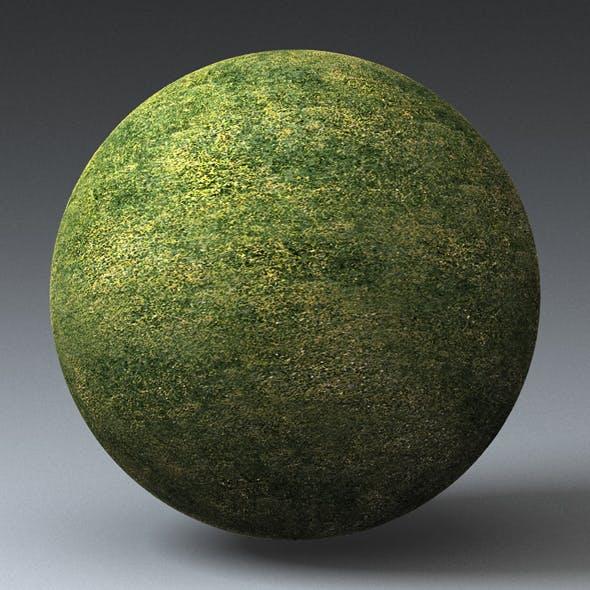 Grass Landscape Shader_036