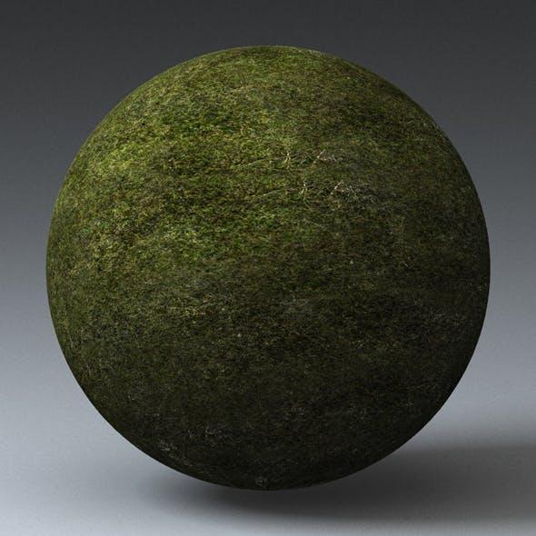 Grass Landscape Shader_039 - 3DOcean Item for Sale
