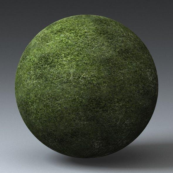 Grass Landscape Shader_040 - 3DOcean Item for Sale
