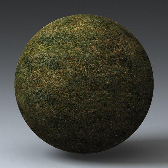 Grass Landscape Shader_044 - 3DOcean Item for Sale
