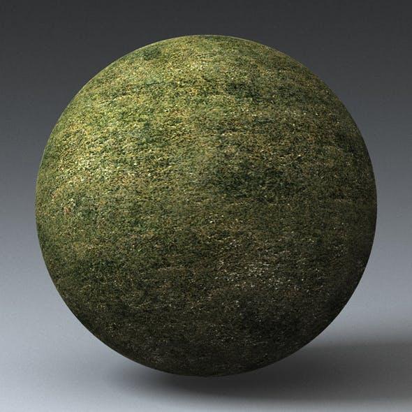 Grass Landscape Shader_047