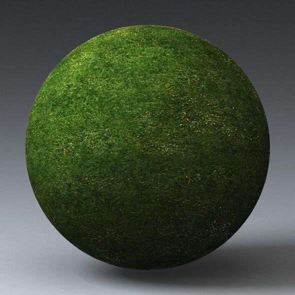 Grass Landscape Shader_048