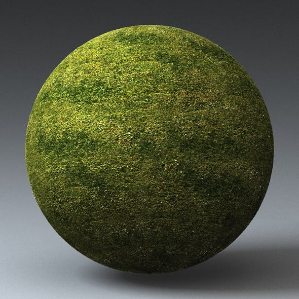 Grass Landscape Shader_050