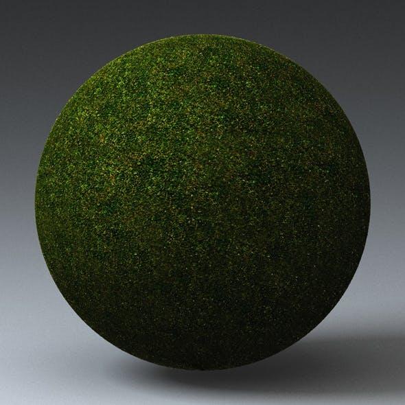 Grass Landscape Shader_051 - 3DOcean Item for Sale