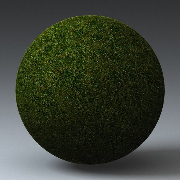 Grass Landscape Shader_051