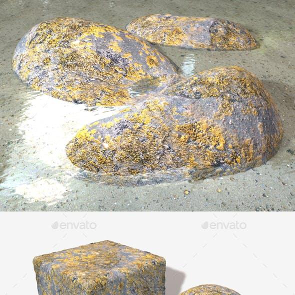 Mossy Rock Seamless Texture