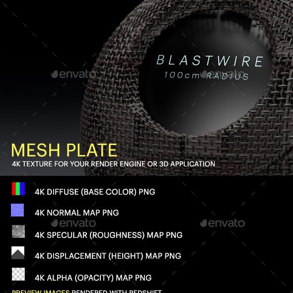 Mesh Plate
