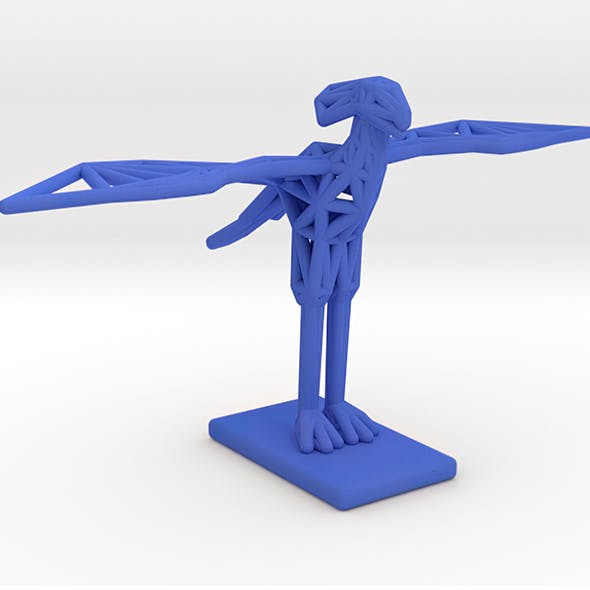 Secretary Bird (Adult Male)