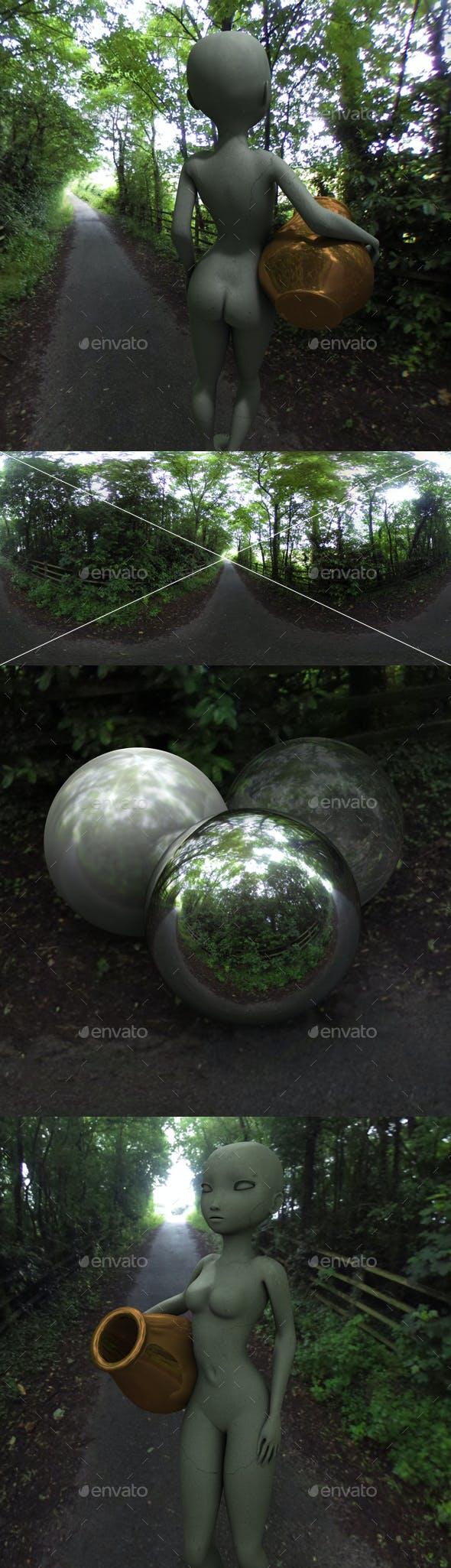 Country Lane HDRI - 3DOcean Item for Sale