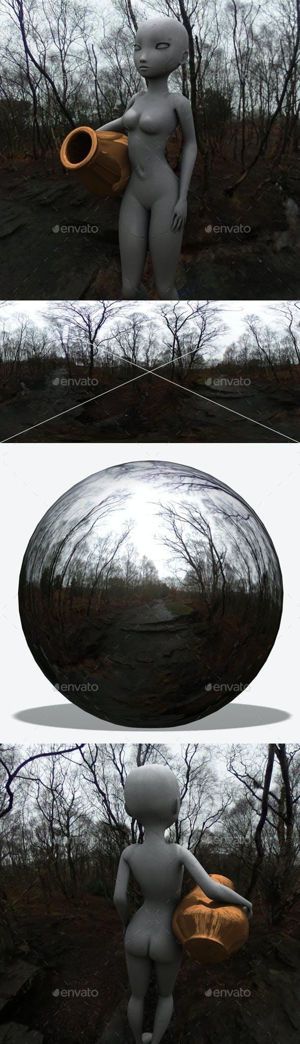 Creepy Dead Forest HDRI - 3DOcean Item for Sale