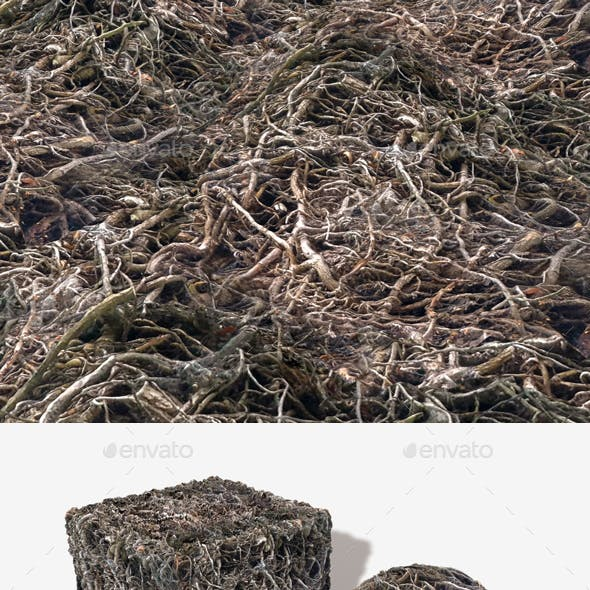 Creepy Dead Vines Seamless Texture
