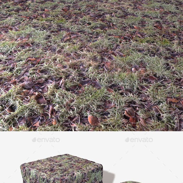 Icy Grass and Leaves Seamless Texture