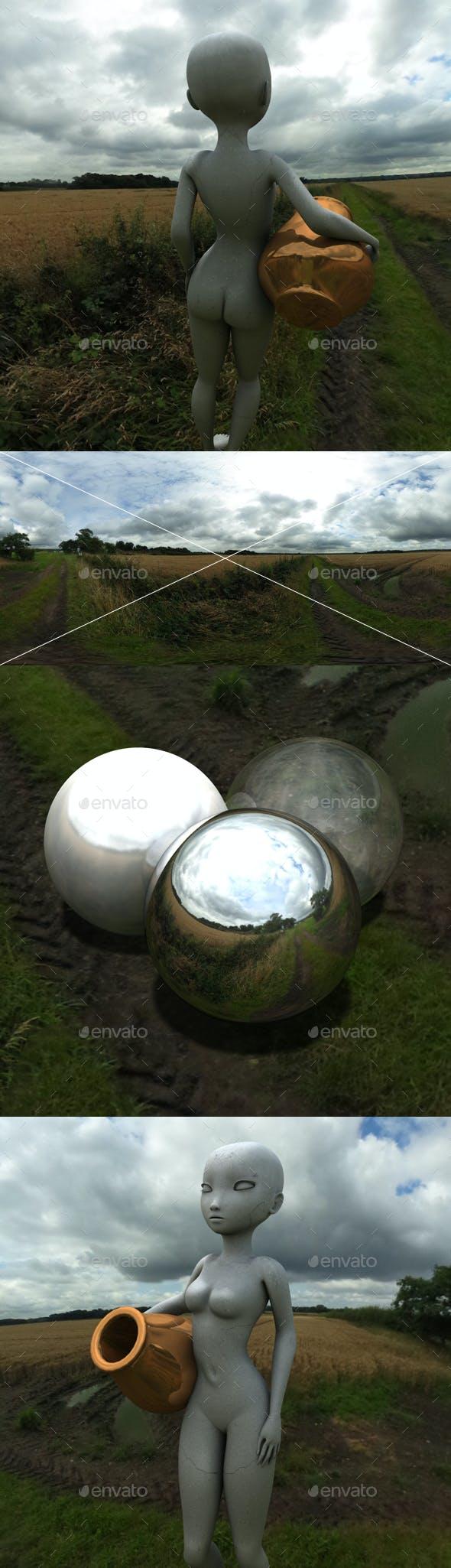 Overcast Farmland HDRI - 3DOcean Item for Sale