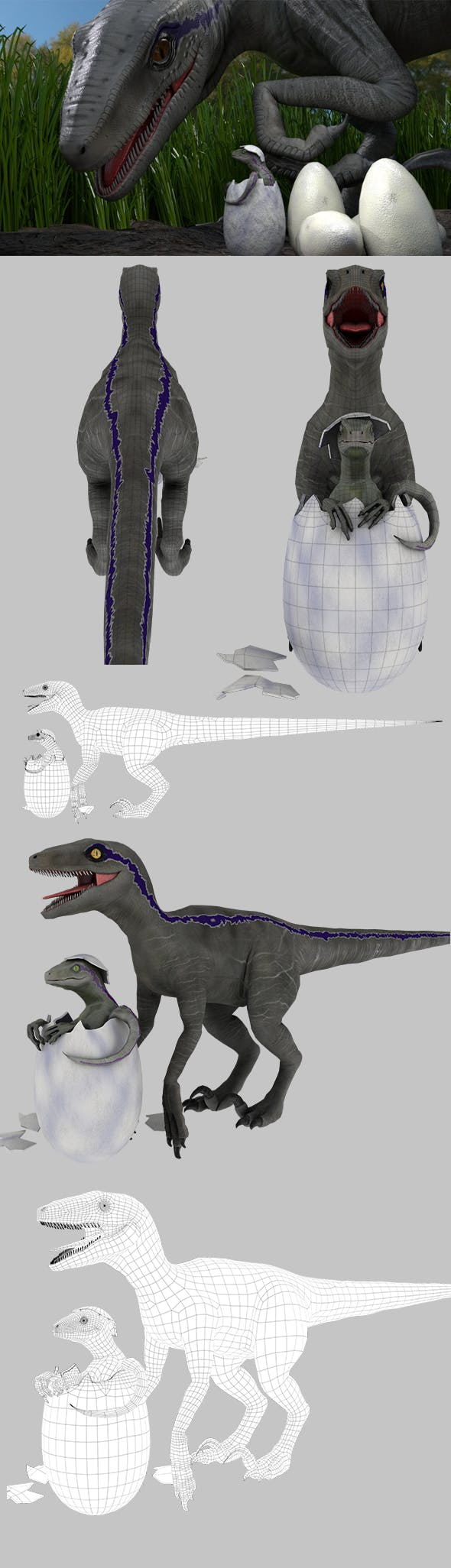 Velociraptor and Baby in Egg - 3DOcean Item for Sale