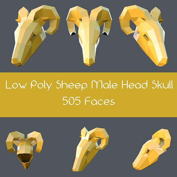 Low poly male sheep head skull