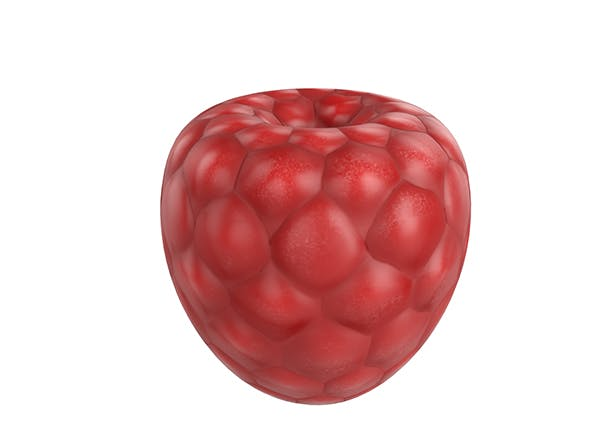 Rasberry - 3DOcean Item for Sale