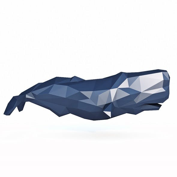 Whale Low Poly - 3DOcean Item for Sale