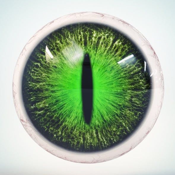 Cat Eye Green Low Poly - 3DOcean Item for Sale