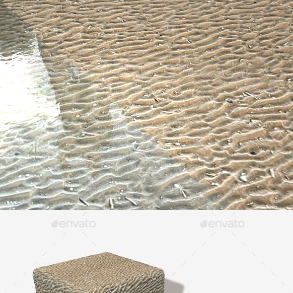 Rippled Sand Seamless Texture