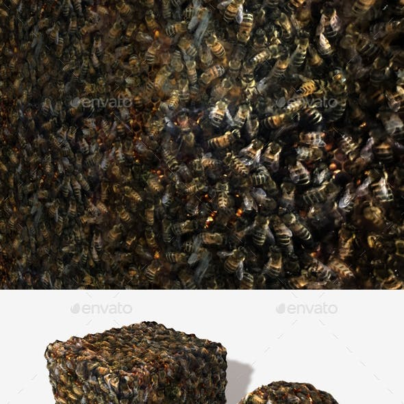 Bees Seamless Texture