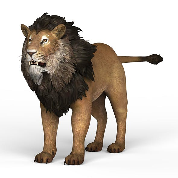 Lion - 3DOcean Item for Sale