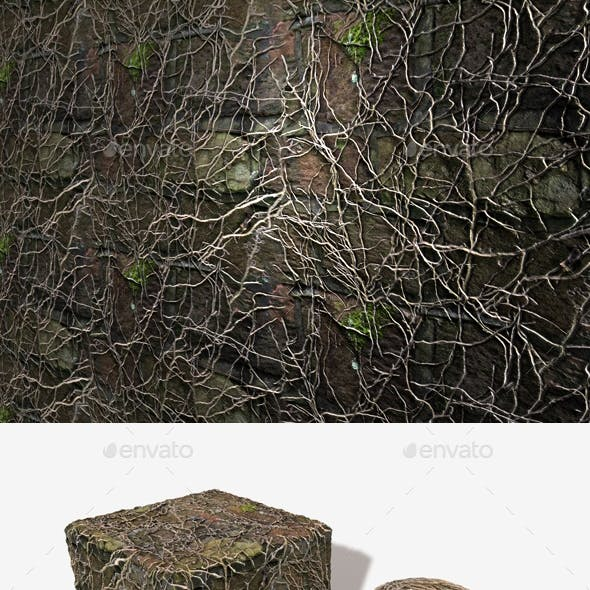 Dead Ivy Wall Seamless Texture